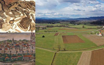 Arheološki pogledi na srednjeveško urbanost