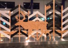 Reja severnih jelenov brez meja, Laponska – med Finsko in Norveško (1)